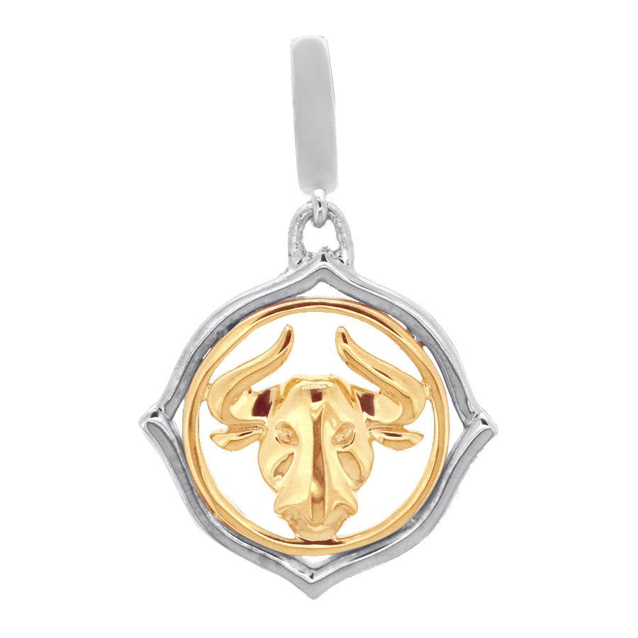 Shop taurus zodiac charm set in sterling silver and 10K yellow gold.