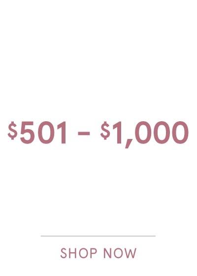 $501-$1000 SHOP NOW