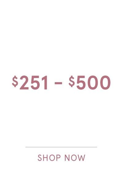$251-$500 SHOP NOW